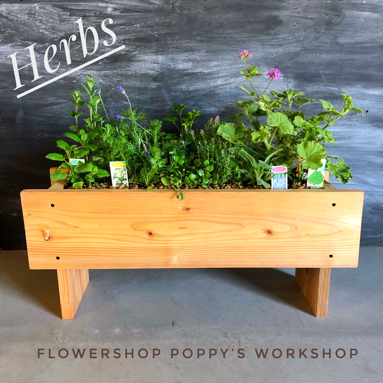 Flower shop 【POPPY】ハーブの寄せ植え